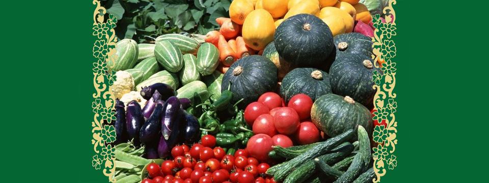 Натуральное землехозяйствование и фильм Колин Серро «Локальные решения глобальных проблем». Продолжение